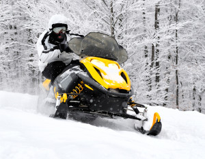 NADA Snowmobile